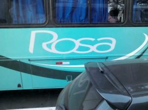 Rosa: empresa de transportes que tem ônibus azuis.