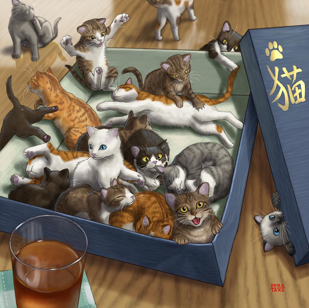 Lidando com gatos